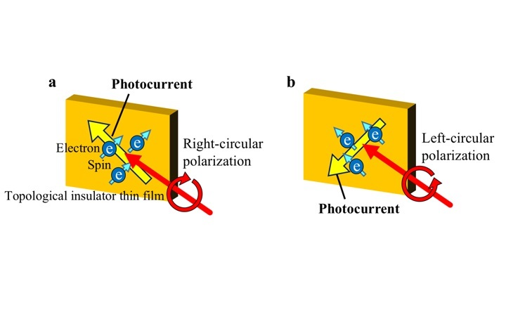 Schematics of spin-polarized photocurrent on the surfaces of TI thin films generated by optical pulses