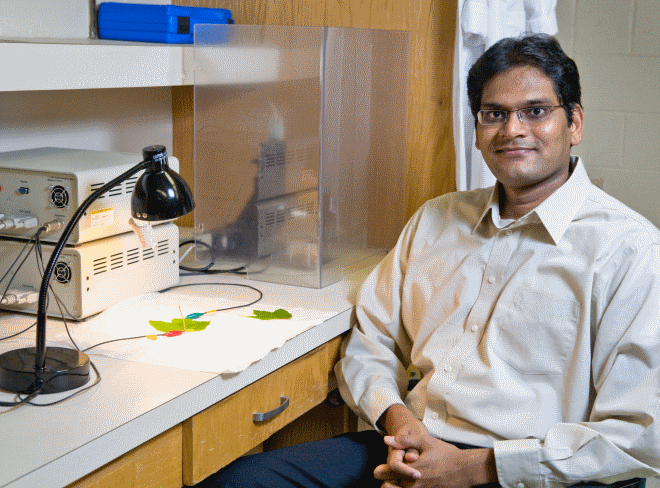 Ramaraja Ramasamy is an assistant professor in the UGA College of Engineering.