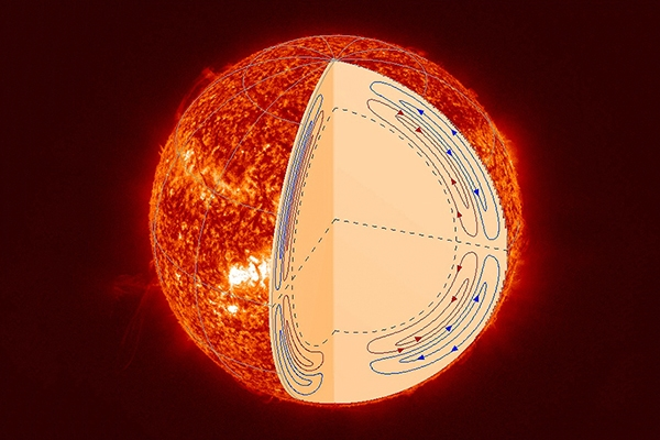 The sun's double-cell meridional circulation structure