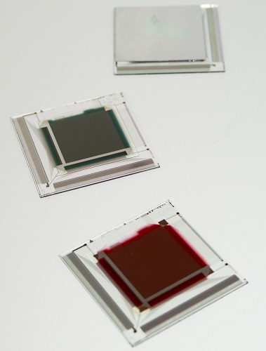 NikkoIA Organic Image Sensors X-Ray, near infrared and visible sensitivity