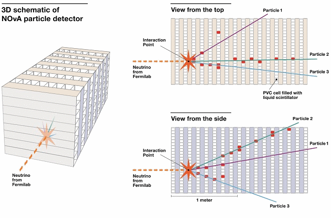 A graphic representation of one of the first neutrino interactions captured at the NOvA far detector in northern Minnesota