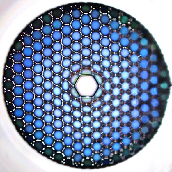 Microscopic image of a hollow-core optical fibre