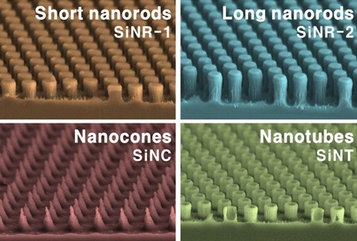 Comparison of various silicon nanostructures and the efficiency of hybrid solar batteries
