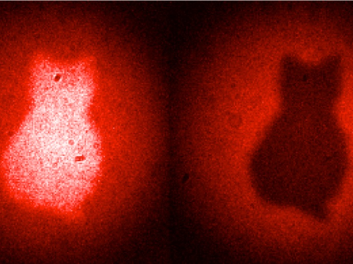 New quantum imaging technique generates images with photons that have never touched to object