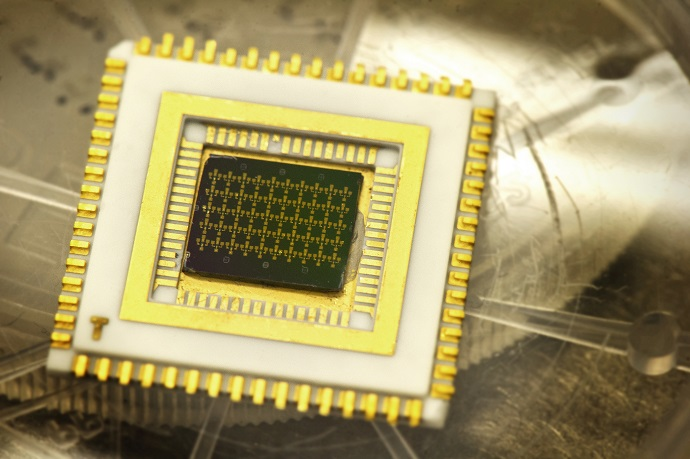 A chip which contains nanoscale structures