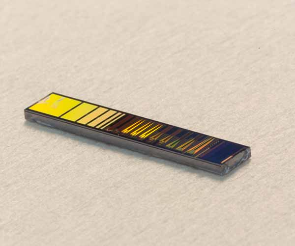 The silicon photonic chip