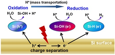 Schematic illustration for the mechanism responsible for photocatalytic hydrogen production on the surface of silicon nanowires