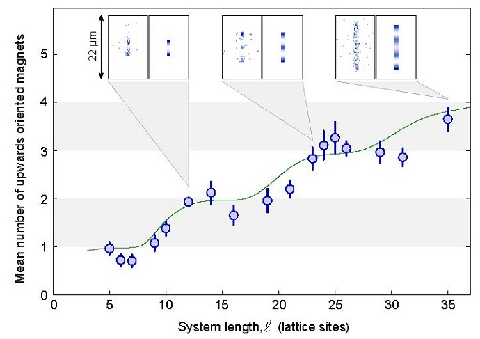 With growing system length the number of upwards oriented magnets rises in steps