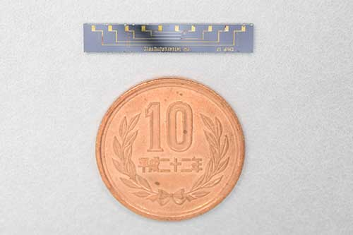 The photonic chip