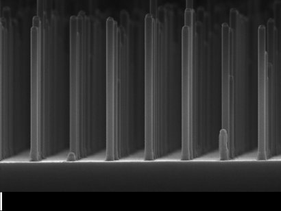 Array of nanowires gallium phosphide made with an electron microscope