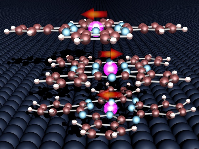 The magnetic moments of the three organic molecules and the cobalt surface align very stably relative to each other