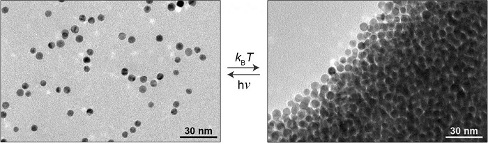 Nanoparticles in a light-sensitive medium scatter in the light