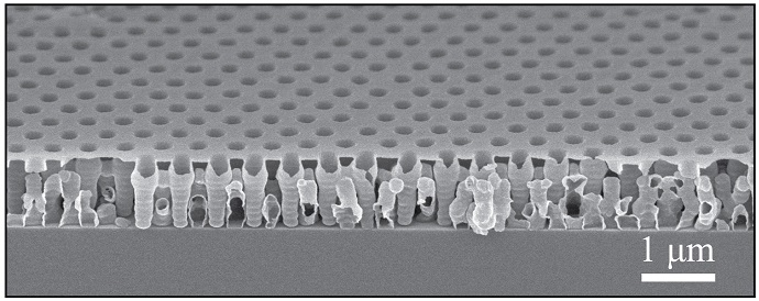 This image shows the structure of the dielectric film at the micrometer scale. Image credit: Chih-Hao Chang. Click to enlarge