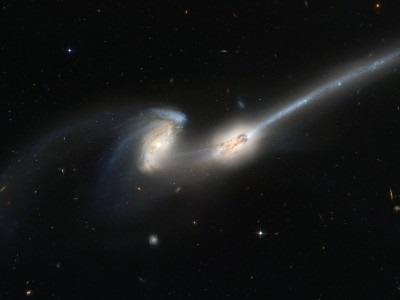 Merging galaxies caught in the act by the Hubble Space Telescope