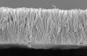 A cross-section of nanowire film