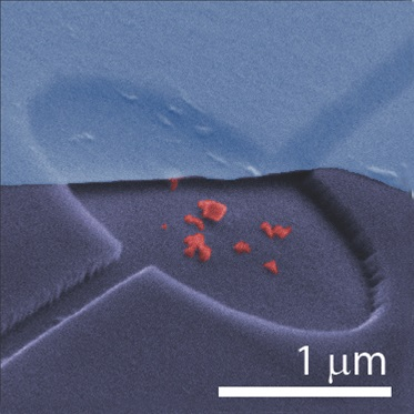 False colour scanning electronic micrograph of hybrid graphene-NV near-field nano-optomechanical system