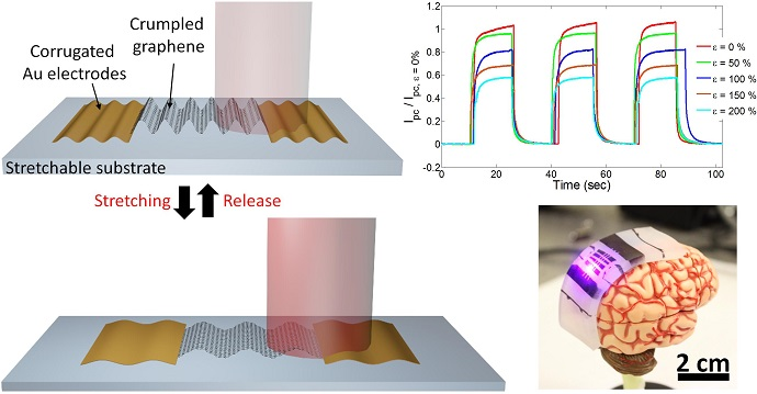 Stretchable photodetector