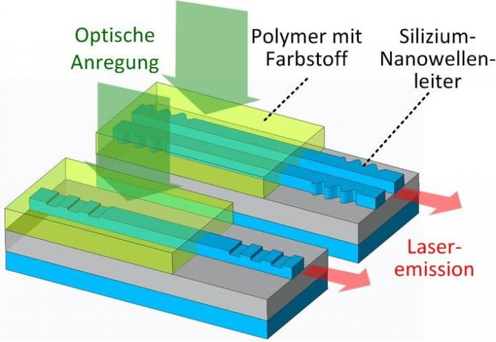 Organic laser on a silicon photonic chip