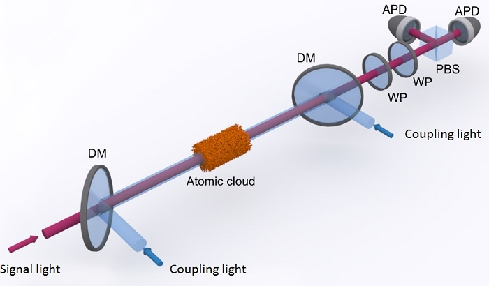 A cloud of cold atoms is illuminated with red signal light and blue coupling light