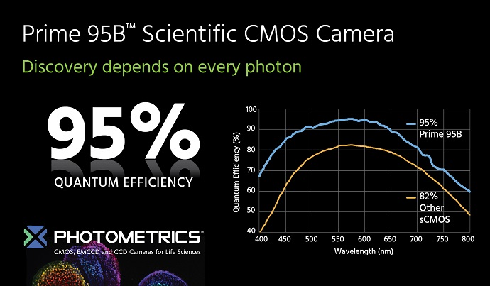 Photometrics Launches Next Generation Scientific CMOS Camera with 95 Percent Quantum Efficiency