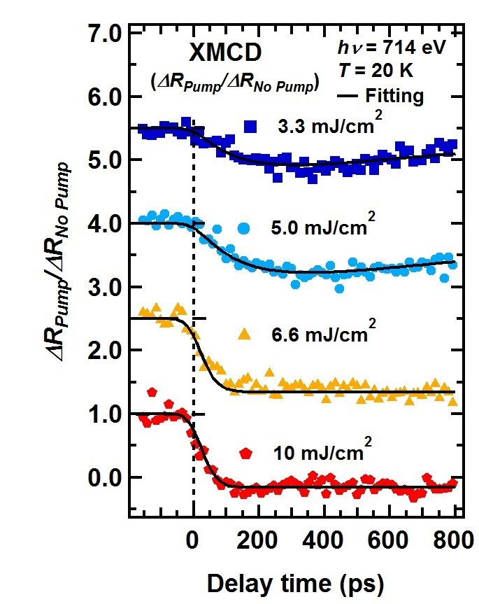 Time evolution of magnetization observed by time-resolved magnetic circular dichroism