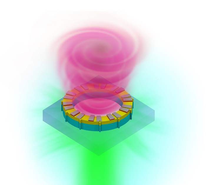 The image above shows vortex laser on a chip