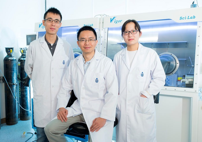 Prof Henry He Yan's research team