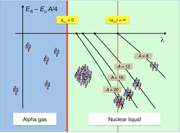 Diagram showing a quantum phase transition from a gas of alpha particles to a nuclear liquid