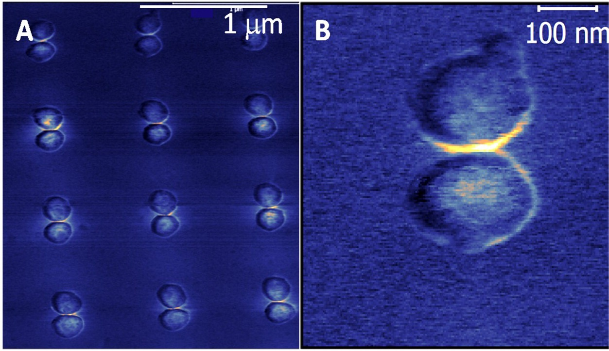 These images show the measured optical forces for an array of plasmonic gold disc pairs known as dimers that were probed by an atomic force microscopy tip