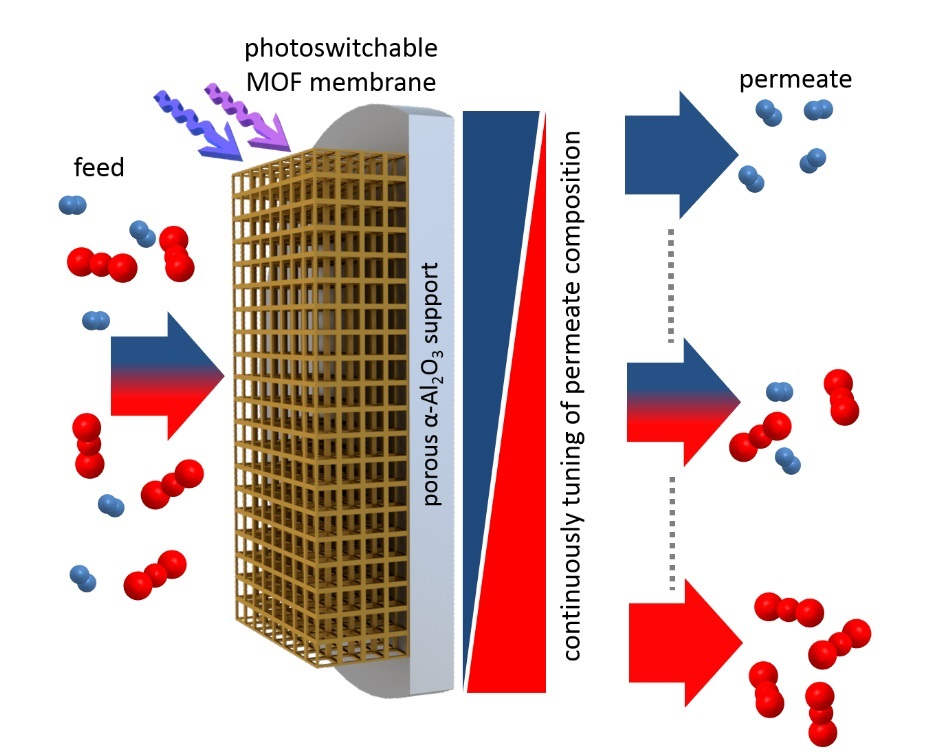A MOF membrane with integrated photoswitches separates molecules