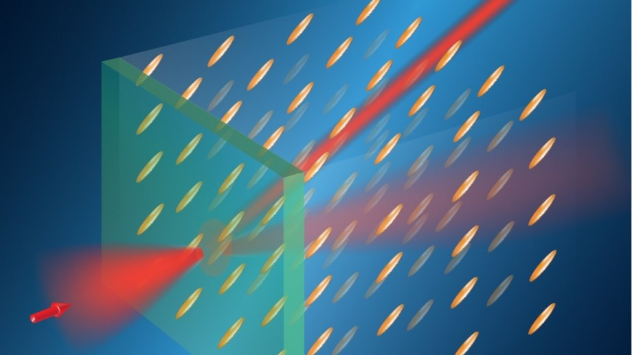 Routing of light in a liquid crystal by a magnetic field