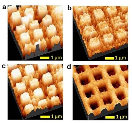 Topography and magnetic phase MFM images of a molecular induced magnetization orientation.