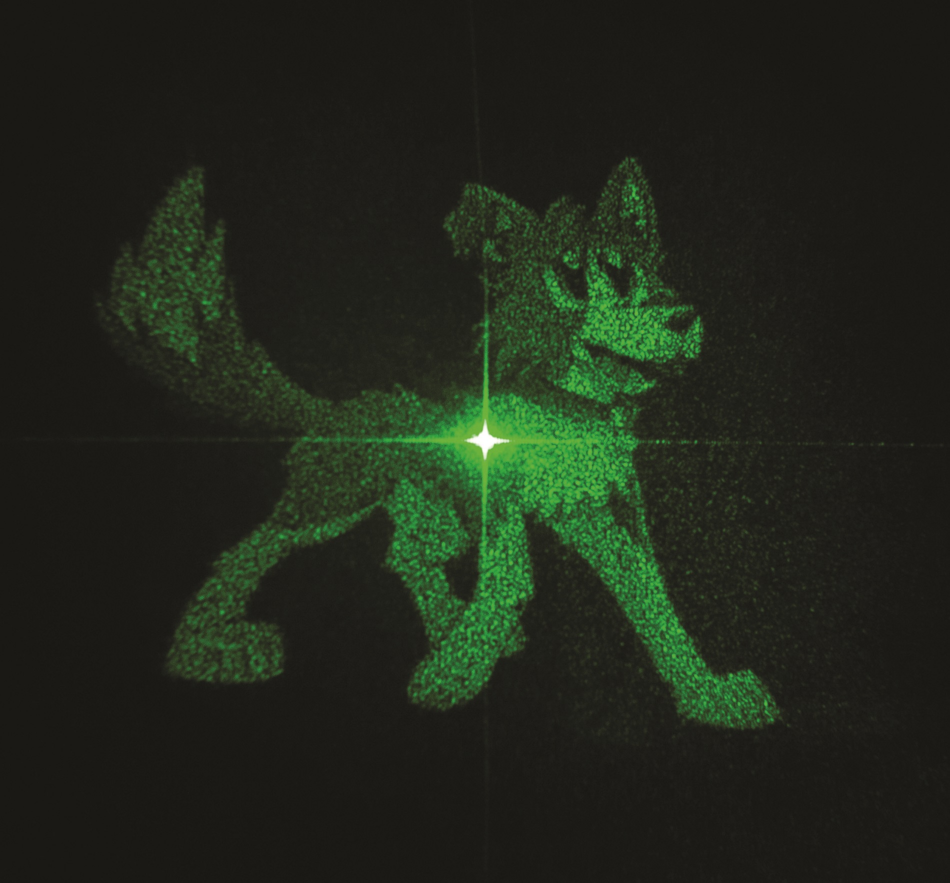 This hologram is one of two different holographic images encoded in a metasurface that can be unlocked separately with differently polarized light