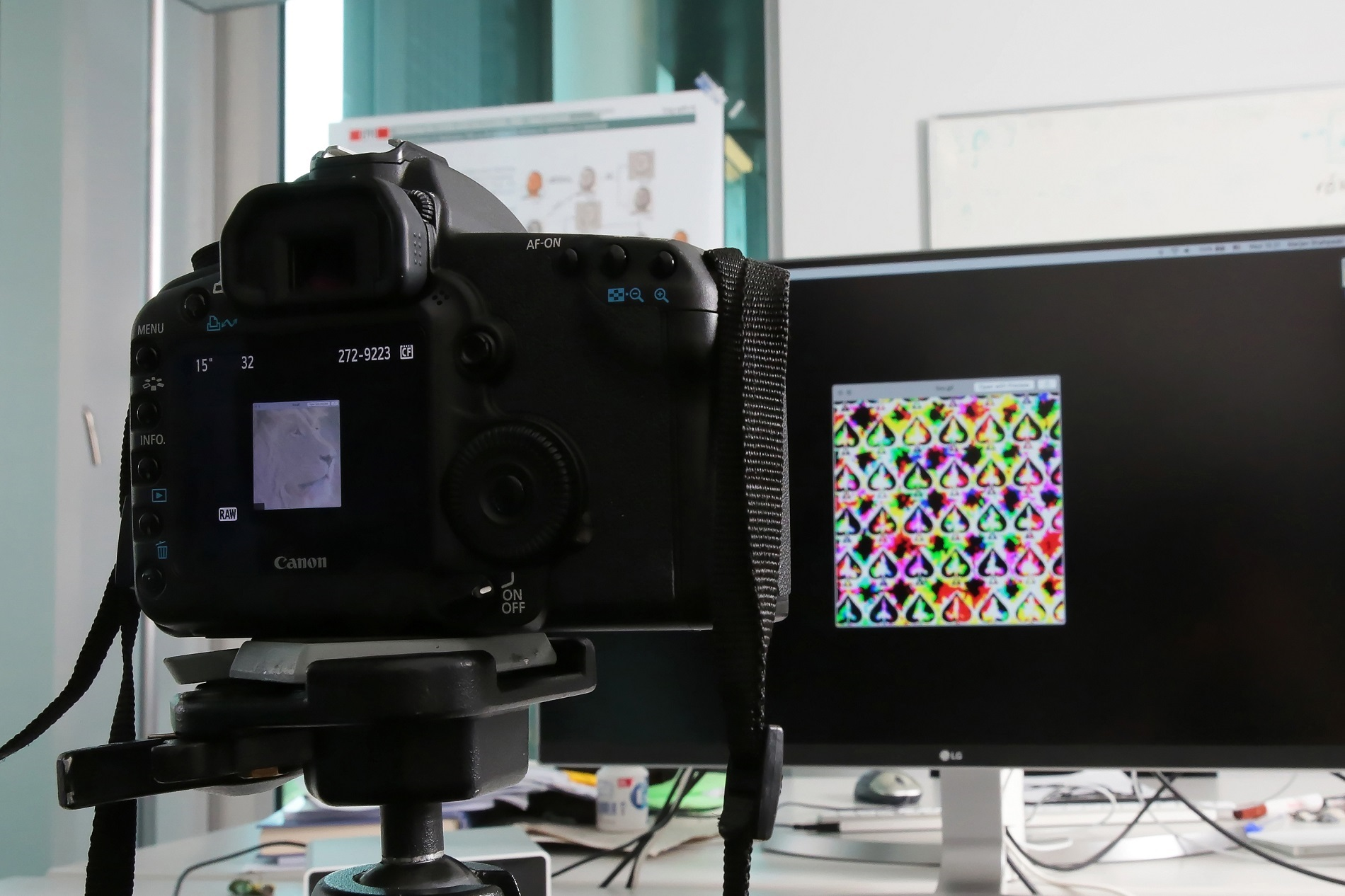 EPFL researchers took advantage of the limits of human vision to hide an image in a video