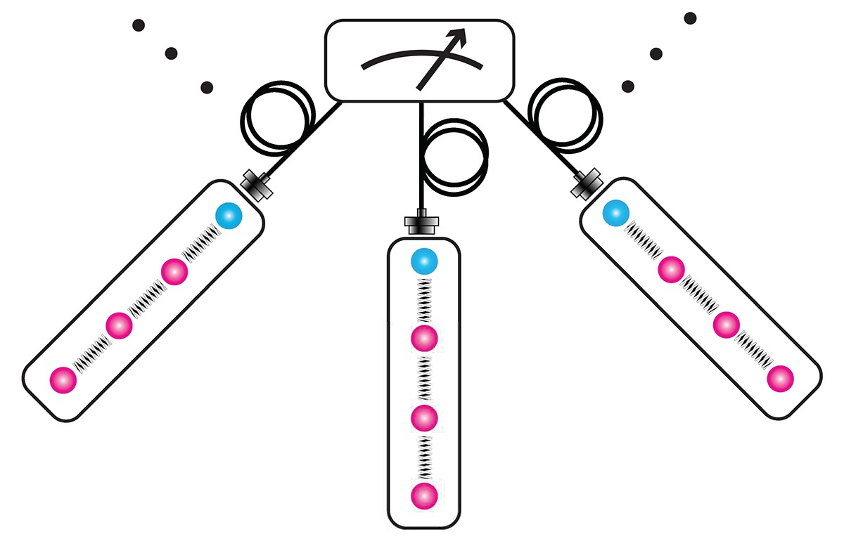 A schematic of three nodes in a quantum network, wired together by fiber optic cables and connected to a central sensor