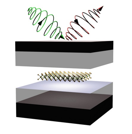 Schematic showing control of valley properties in 2D semiconductors embedded in microcavity