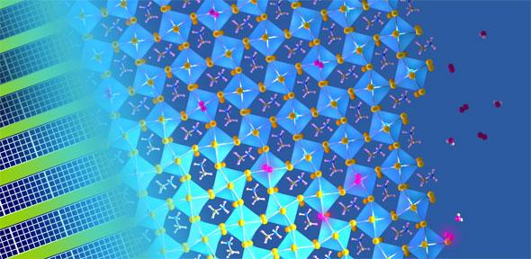 The concoction of light with water and oxygen molecules leads to substantial defect-healing in metal halide perovskite semiconductors