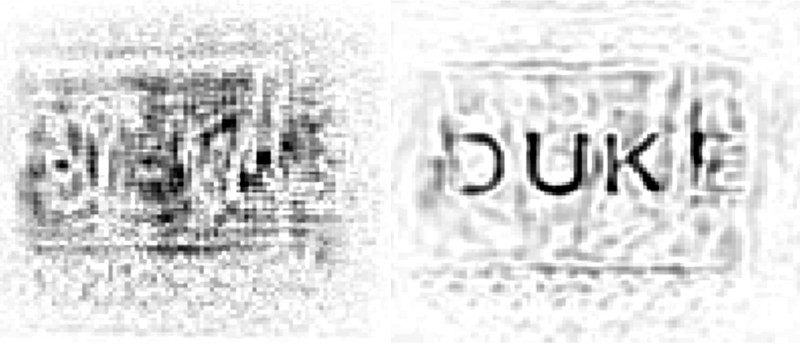 A view of a microwave scan of the Duke logo taken through a wall before and after distortions have been removed.