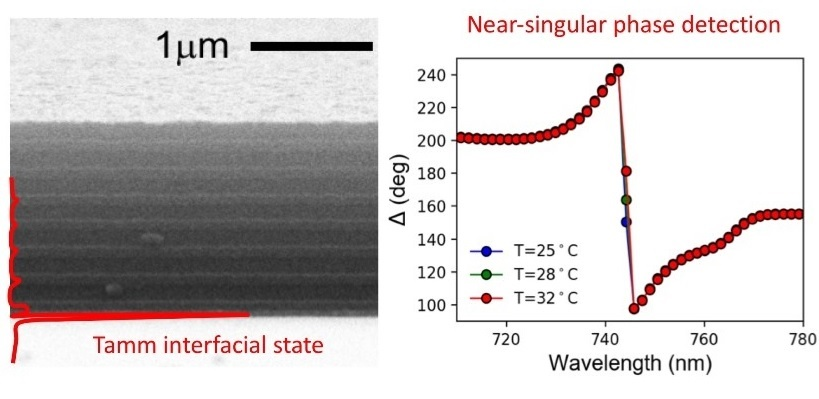 a planar absorber topologically engineered to support an interfacial Tamm optical state