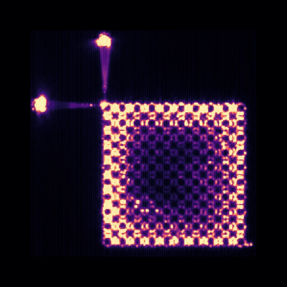 Top view photograph of the intensity lasing pattern of the topological insulator laser.