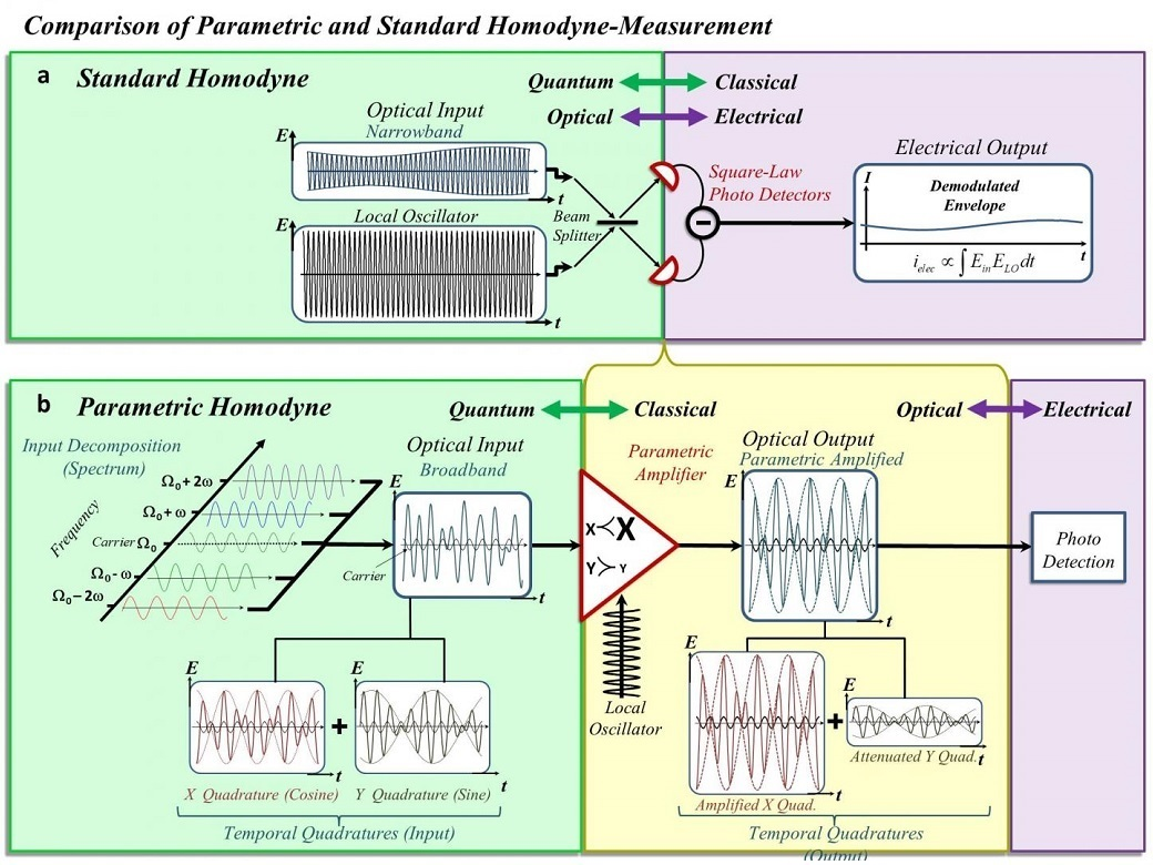 Lifting the Bandwidth Limit of Optical Homodyne Measurement with Broadband Parametric Amplification